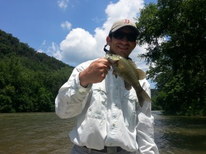 Shenandoah Smallmouth Bass